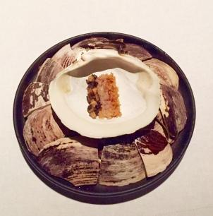 mahogany clam