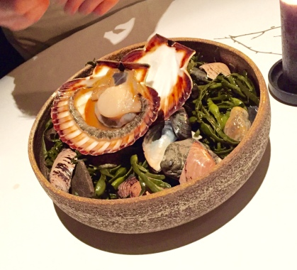 presentation - scallop from the coast of Trondheim