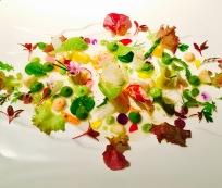 vegetable salad with seafood