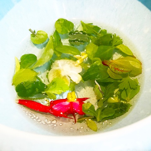 'Aromatic Ripponlea Broth'