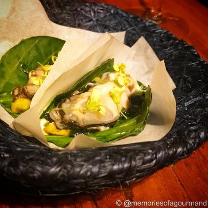 Chaya Taco and Oyster from Bahia Falsa