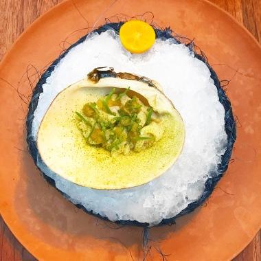 Melon Clam from the Cortez sea