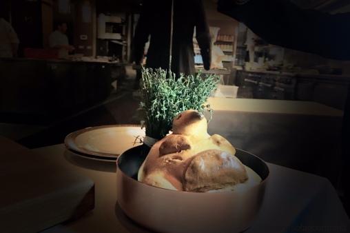 pigeonneau en croute a la perigourdine, gnocchi, chanterelle, hazelnut